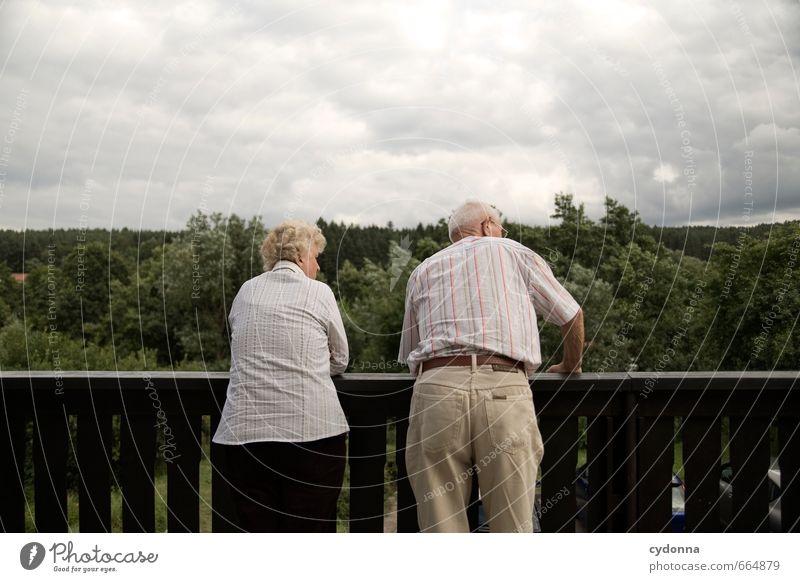 Geschichten hinterm Gartenzaun Mensch Frau Natur Mann alt Sommer Erholung Wolken Wald Erwachsene Umwelt Leben Senior sprechen Gesundheit