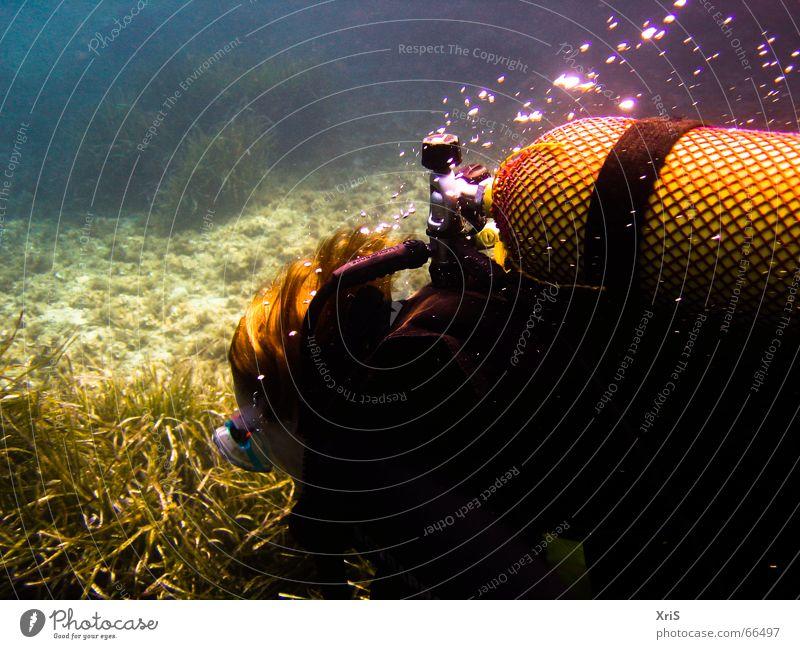 Mallorca - Party Unterwasser 5 tauchen Taucher Tauchgerät Luftblase Algen grün diver diving Unterwasseraufnahme underwater buddy bubbles blau blue Maske mask