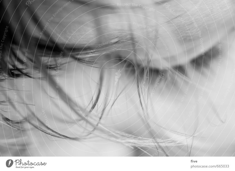 unbeschwert Mensch Kind Jugendliche schön Freude Mädchen Gesicht Erwachsene Auge feminin Spielen Glück Haare & Frisuren Kopf Zufriedenheit Körper