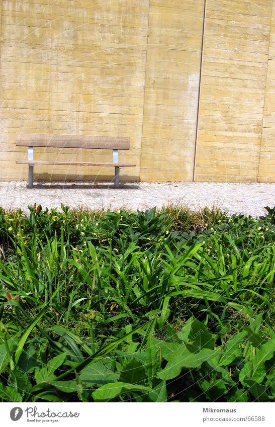 Eine Bank grün Pflanze Sommer Einsamkeit Erholung Wand Wege & Pfade Mauer Stein sitzen Pause Möbel Verkehrswege Rastplatz