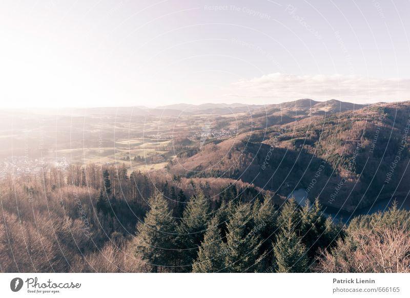 Südschwarzwald Himmel Natur Ferien & Urlaub & Reisen Pflanze Sonne Baum Landschaft Wolken Ferne Wald Umwelt Leben Frühling Freiheit träumen Deutschland