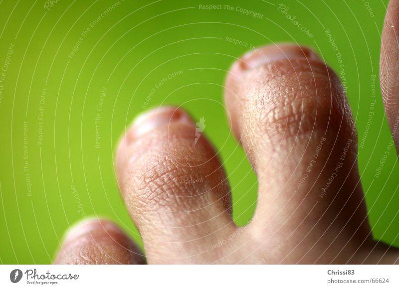 Das geht unter die Haut Zehen kurz rund beweglich Ordnung Physik Riss Tier Nagel Strukturen & Formen klein schmal langsam Selbstständigkeit Sicherheit Reichtum