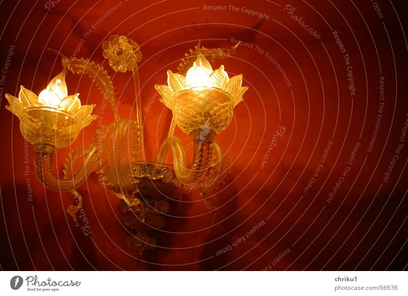 redlight-kitsch rot gelb Lampe Wand Blüte Glas Kitsch durchsichtig Glühbirne Venedig Murano Wandleuchte