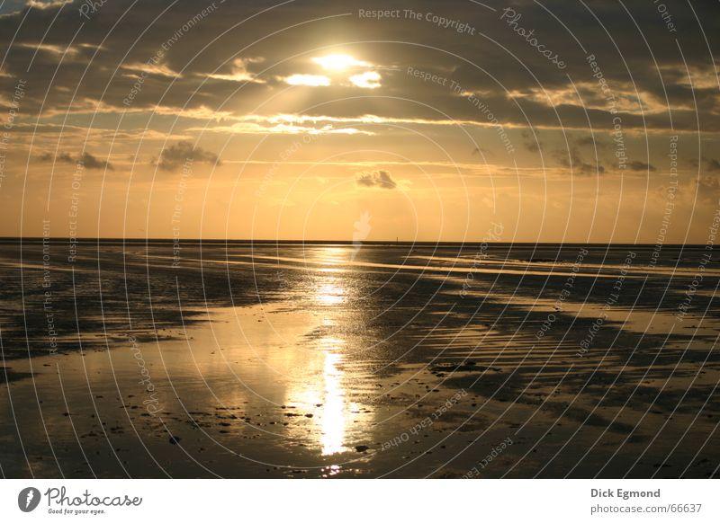 Strand Sankt Peter Ording Sonne Herbst Freiheit Deutschland Sonnenuntergang Jahreszeiten Abschied Verbundenheit Neuanfang St. Peter-Ording Nordseeküste