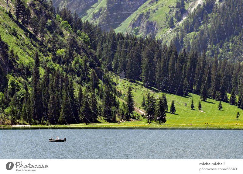 Angeln und Fischen Wasser grün blau Sommer ruhig Einsamkeit Wald kalt Wiese Berge u. Gebirge Stein See Wasserfahrzeug Felsen Tanne