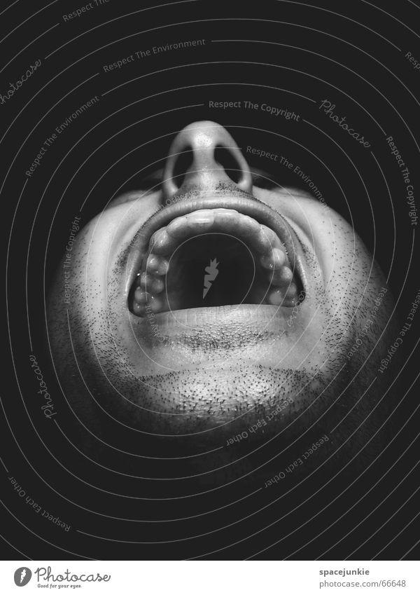 the monkeys shout Mensch Mann schwarz Gesicht dunkel Angst verrückt Gewalt schreien böse Freak beängstigend Zähne zeigen