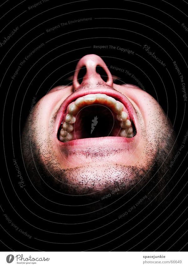 the monkeys shout (2) Mann Freak Angst beängstigend schreien dunkel schwarz Zähne zeigen böse verrückt Mensch Gesicht Gewalt