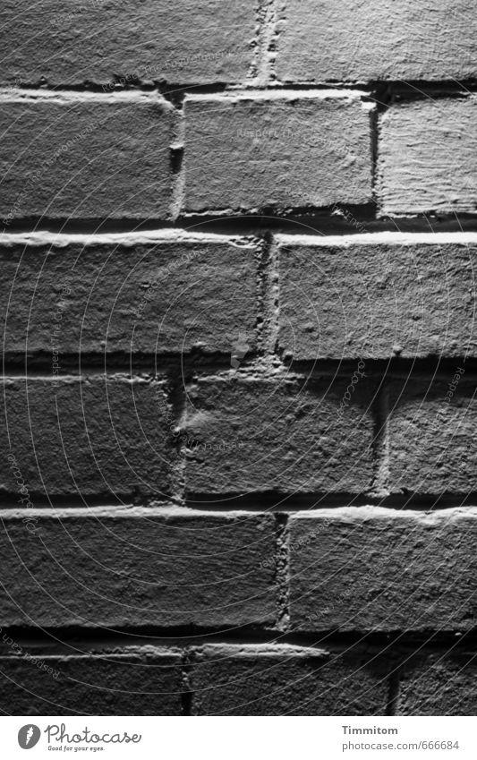 Licht und Schatten. Häusliches Leben Haus Mauer Wand Backstein Fuge Linie ästhetisch eckig einfach grau schwarz weiß Gefühle Vertrauen Schwarzweißfoto