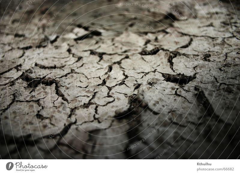 Die Wüste ist tot. Landschaft Erde trocken Grundbesitz