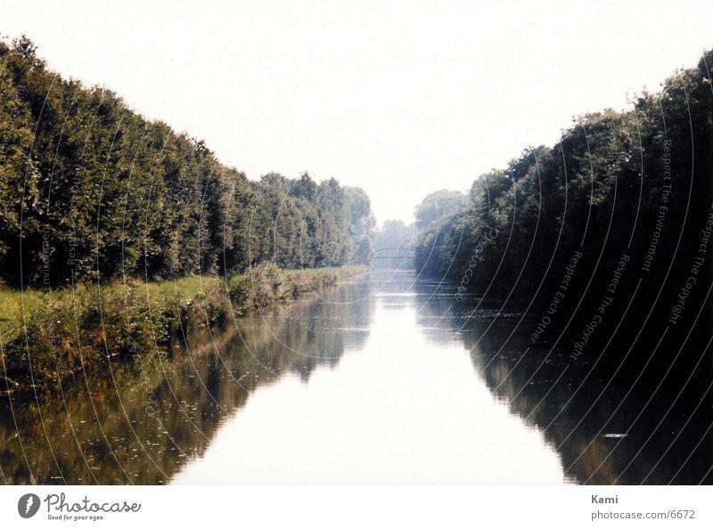 Flusslandschaft Wasser Baum Stimmung Nebel Fluss geheimnisvoll Abwasserkanal