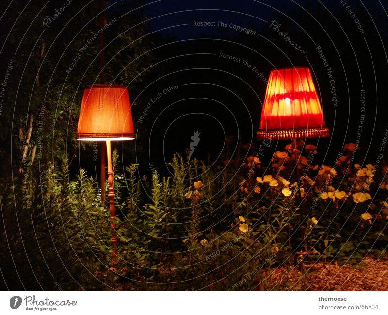 sieLEUCHTEN alt grün Pflanze rot gelb Lampe dunkel Wärme 2 orange Physik Stoff gemütlich Lampenschirm Stehlampe