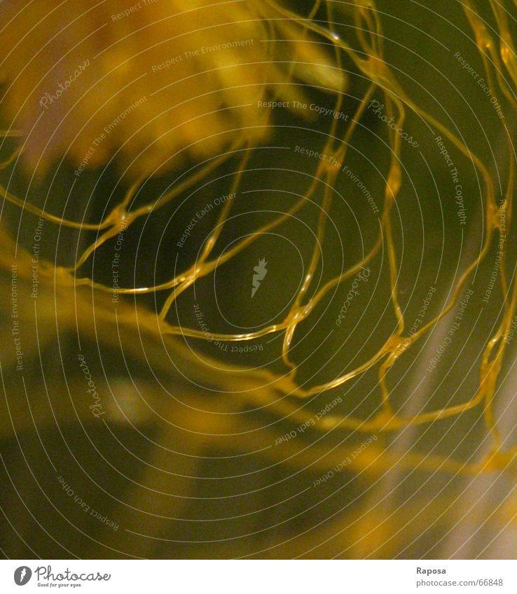 MAKRO-MASCHIG grün gelb Netz Mikrofon Vernetzung einpacken Schlaufe Recycling fetzig Verpackungsmaterial Grüner Punkt