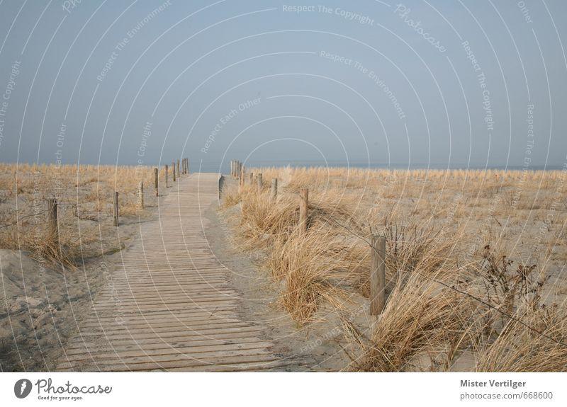 Dune Natur Landschaft Sand Wasser Himmel Horizont Frühling Herbst Nebel Gras Wellen Küste Strand Ostsee Meer Hafenstadt Menschenleer entdecken Erholung laufen