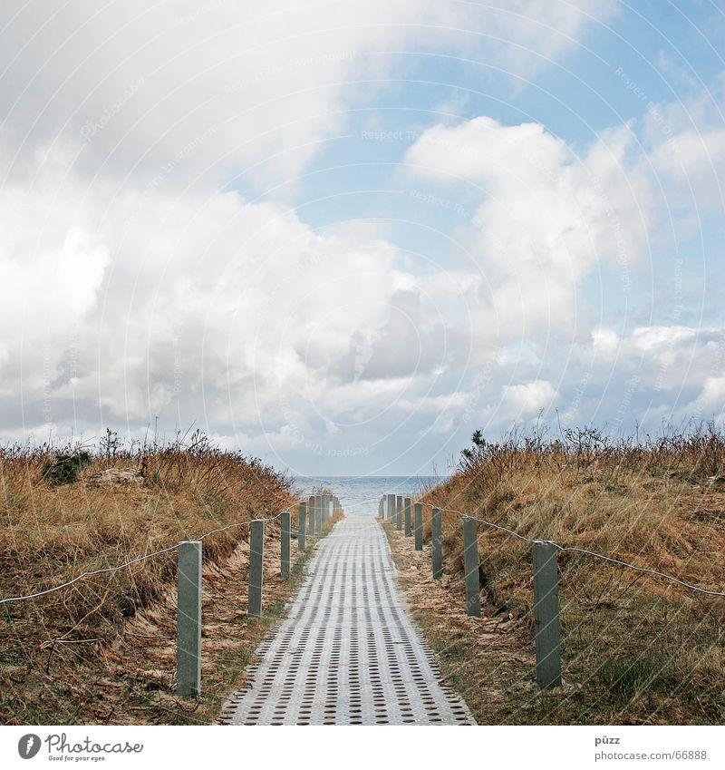 Der Weg Natur Himmel Meer Sommer Strand Ferien & Urlaub & Reisen Wolken Ferne Herbst Frühling Wege & Pfade Landschaft Küste Hoffnung Mitte Stranddüne