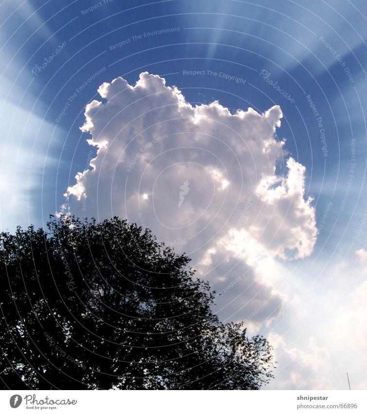 Strahlemann 5000 Wolken Sommer Himmel Baum fantastisch Hagen Physik Erholung genießen attraktiv blau sky sky3 Beleuchtung Sonne reflektion atomlicht abstrakt