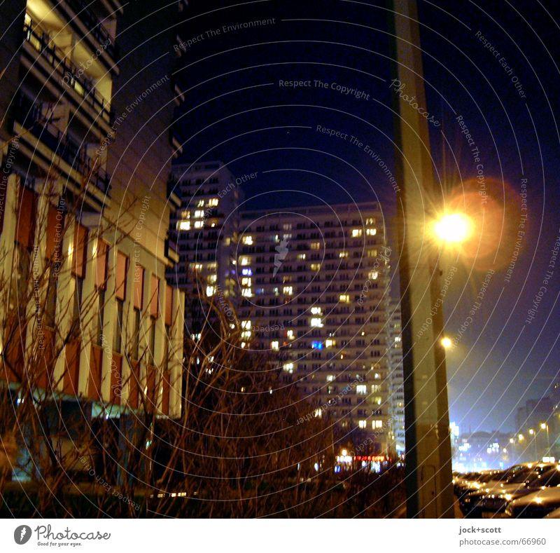 Frostwetter Nachthimmel Winter Eis Sträucher Berlin-Mitte Wohnhochhaus Stadthaus Plattenbau Fassade PKW dunkel eckig kalt trist Stimmung Umwelt Umgebung DDR