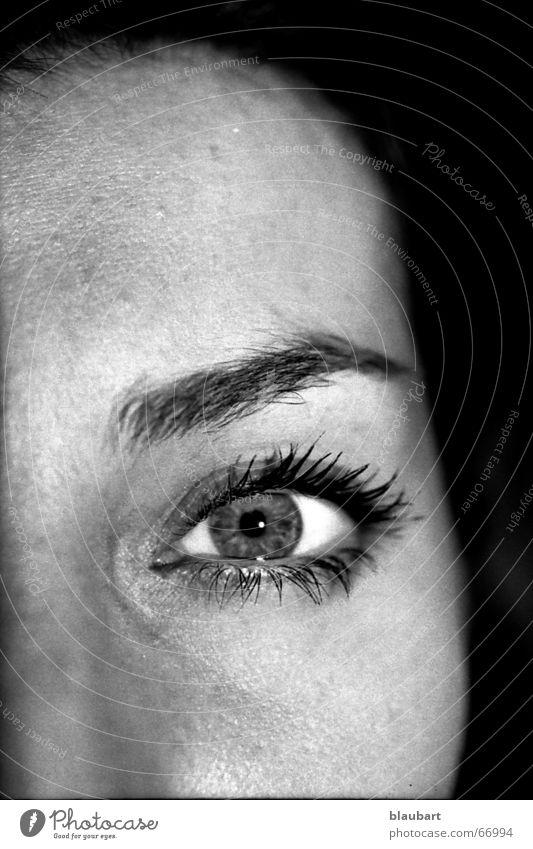 composition Frau weiß Gesicht schwarz Auge Kopf Nase Wange Wimpern Augenbraue Stirn Pupille Regenbogenhaut Nasenbein