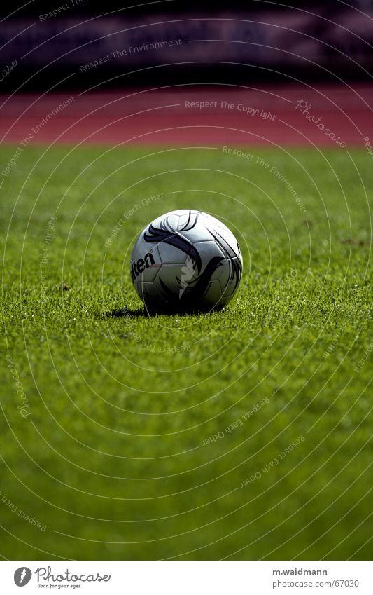 der ball ist rund Wiese Gras grün Platz Stadion Spielfeld Sportgerät Leder Außenaufnahme Rasen Ball Fußball