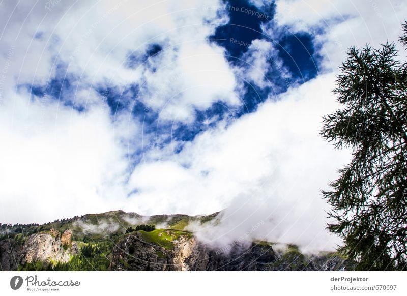 Der Berg ruft 12 - mit Baum im Vordergrund Natur Pflanze Sommer Landschaft Wolken Ferne Berge u. Gebirge Umwelt Gefühle Freiheit Felsen Freizeit & Hobby