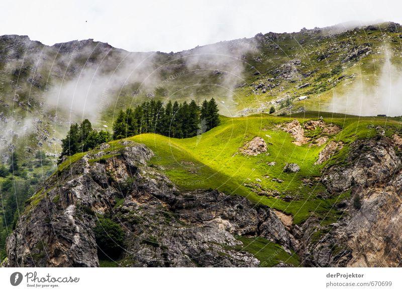 Vorlage für Miniaturwelten: Berge mit Bäumen Natur Ferien & Urlaub & Reisen Pflanze Sommer Baum Landschaft Freude Berge u. Gebirge Umwelt Gefühle Stimmung