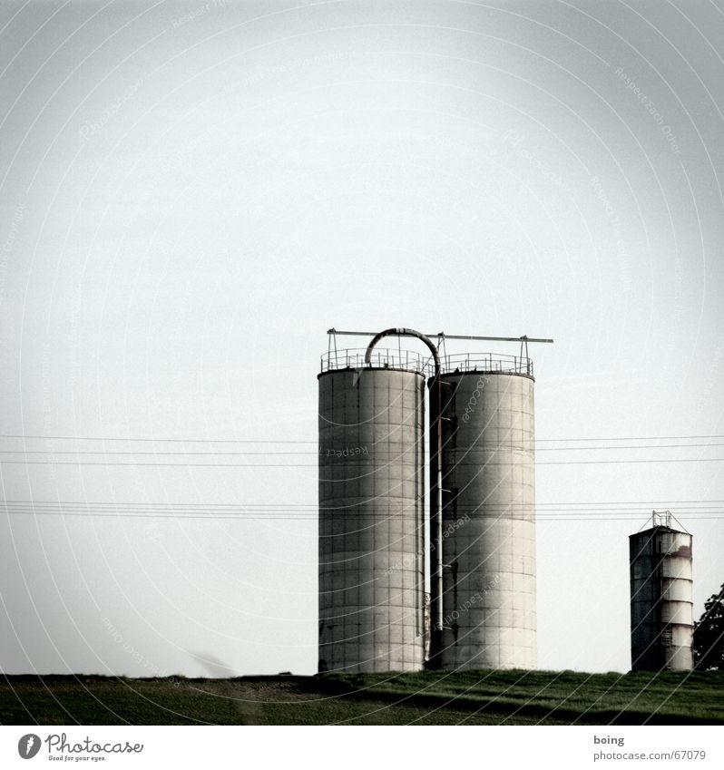 and on his farm he had some chicks I-A-I-A-O Macht Niveau Bauernhof geheimnisvoll Getreide Landwirtschaft Sportveranstaltung zentral Konkurrenz Lager verborgen Silo Hauptstelle Sekte Dosenpfand