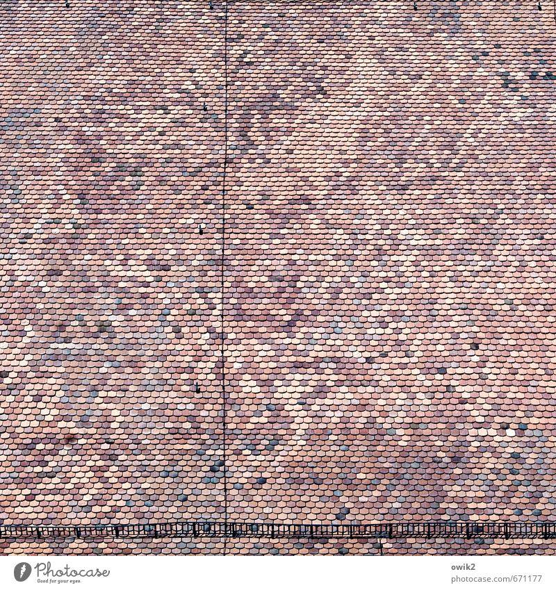 Dachlandschaft Kirche Bauwerk Gebäude Architektur Dachziegel Kirchendach authentisch fest groß hoch oben viele Ordnung Präzision Qualität Schutz Zusammenhalt