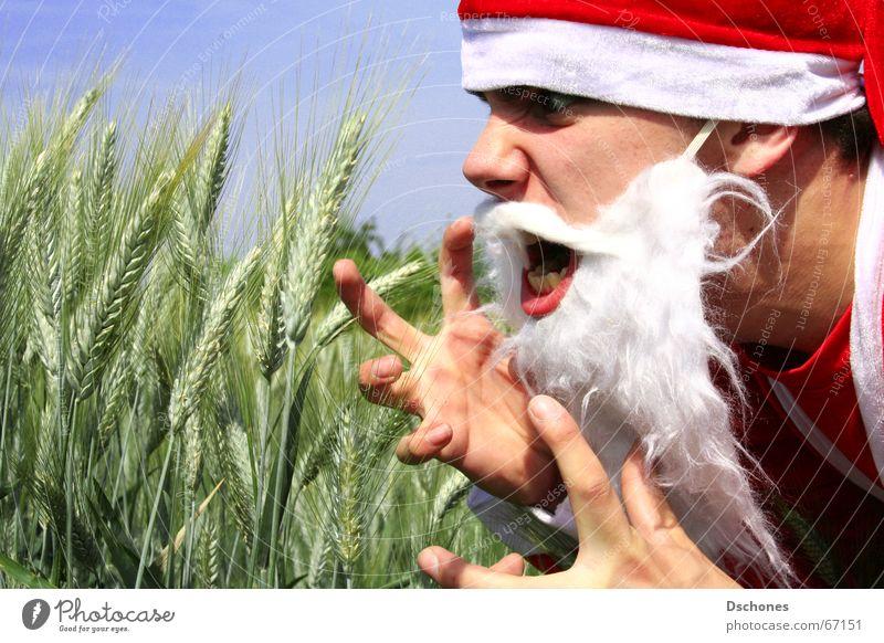 KLAUS VERLIERT ALLES Feld Anti-Weihnachten Weihnachtsmann Wut Mütze Bart schreien Stress böse Kornfeld Irritation Ärger Kostüm Frustration unheimlich gestikulieren