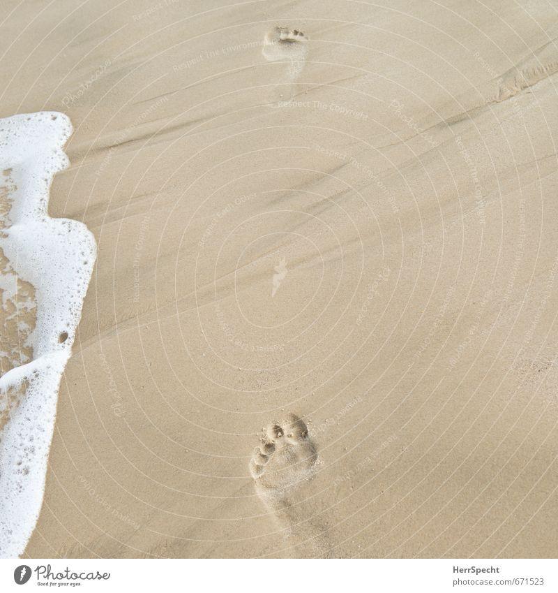 Deine Spuren im Sand... Ferien & Urlaub & Reisen weiß Sommer Sonne Meer Strand Wärme Schwimmen & Baden gehen braun Wellen laufen Tourismus frisch ästhetisch Vergänglichkeit