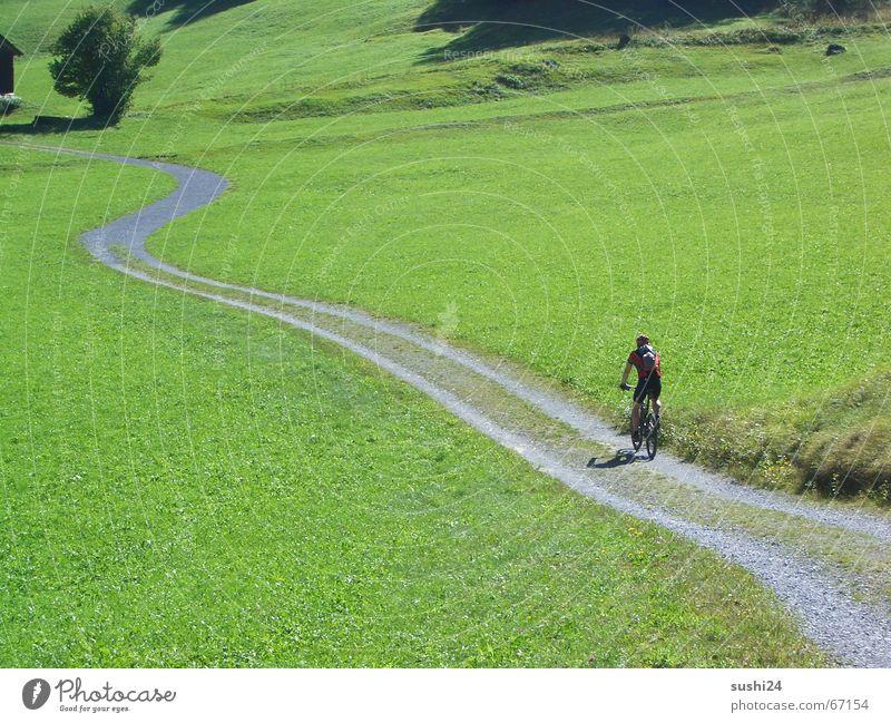 endlich frei Wiese ruhig Einsamkeit Fußweg langsam Frieden Erholung Ferien & Urlaub & Reisen Weitwinkel biken mountain mountainbike schweiz Alpen Wege & Pfade