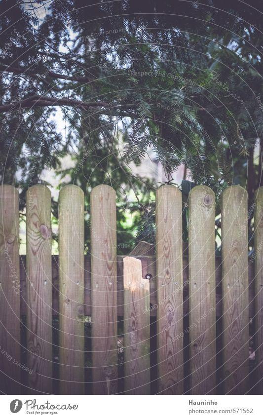 Gartenzaun Natur grün Baum Einsamkeit Umwelt Holz Park trist Kleinstadt Grünpflanze Holzwand