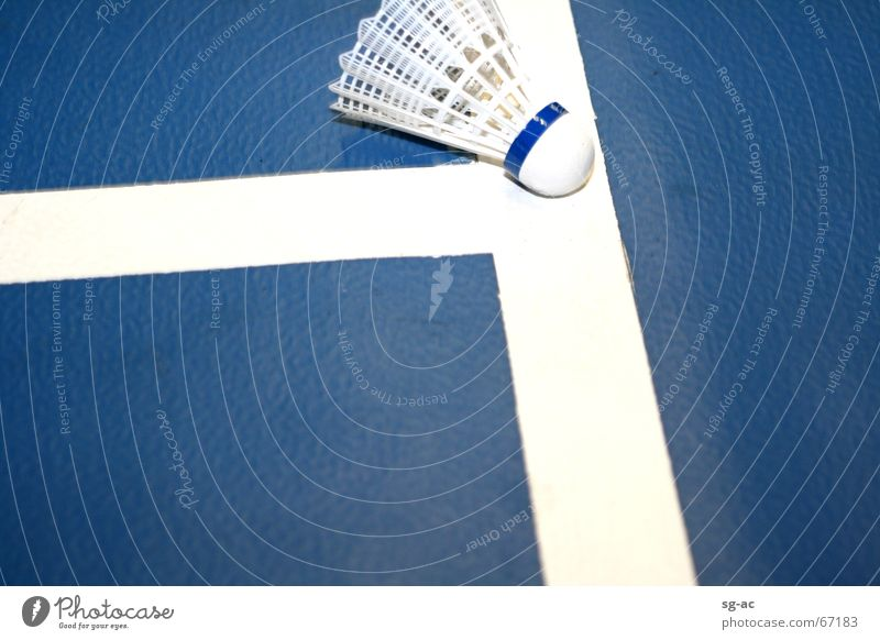 Drin oder Aus? Badminton weiß Kork blau blue white Linie shuttlecock Feder Lagerhalle Sport Ball Federball