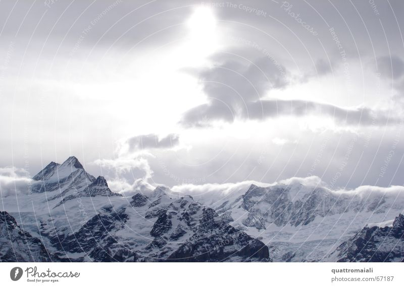 Wintersonne Sonne Wolken kalt Schnee Berge u. Gebirge Eis Felsen Schweiz Alpen Gipfel Gletscher Grindelwald