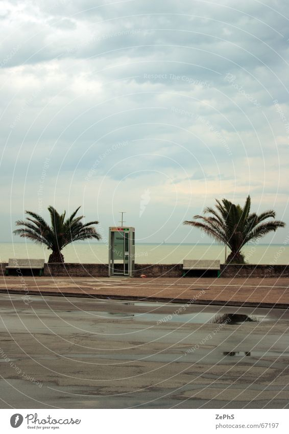 phone alone Strand Italien Niveau Marche Schwimmbad Palme Regen Meer Pfütze adriatic civitanova landscape province rainy reflection sea Landschaft Provinz