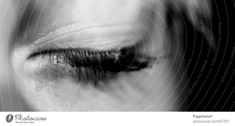 Gute. Nacht. Mensch schön Gesicht ruhig Erholung träumen schlafen geschlossen weich Müdigkeit Sinnesorgane Wimpern ruhen geschwungen Geistesabwesend
