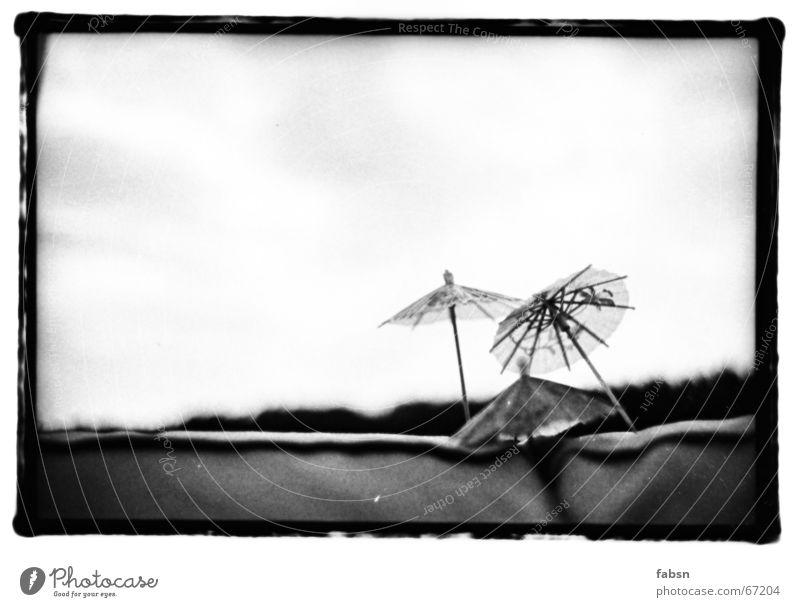 SOFA PALM BEACH Aktien Sommer heiß Sofa Papier Leder schwarz ruhig Gelassenheit Ruhemöbel Ödland weiß Einsamkeit Umwelt bequem Regenschirm