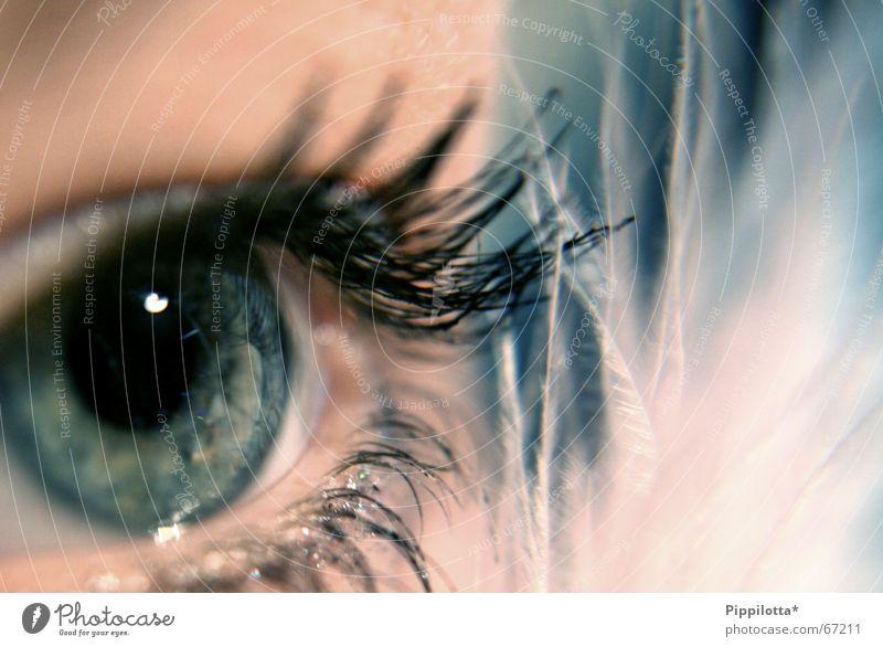 augenblick Mensch schön Gesicht Auge kalt braun glänzend Perspektive Aussicht weich Feder Klarheit beobachten zart entdecken Schminke