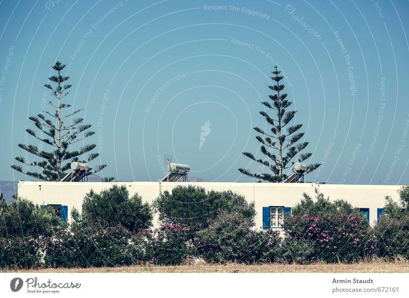 Griechischer Garten mit Haus Natur Ferien & Urlaub & Reisen blau weiß Pflanze Sommer Baum ruhig Umwelt Wand Mauer Stimmung Idylle Zufriedenheit