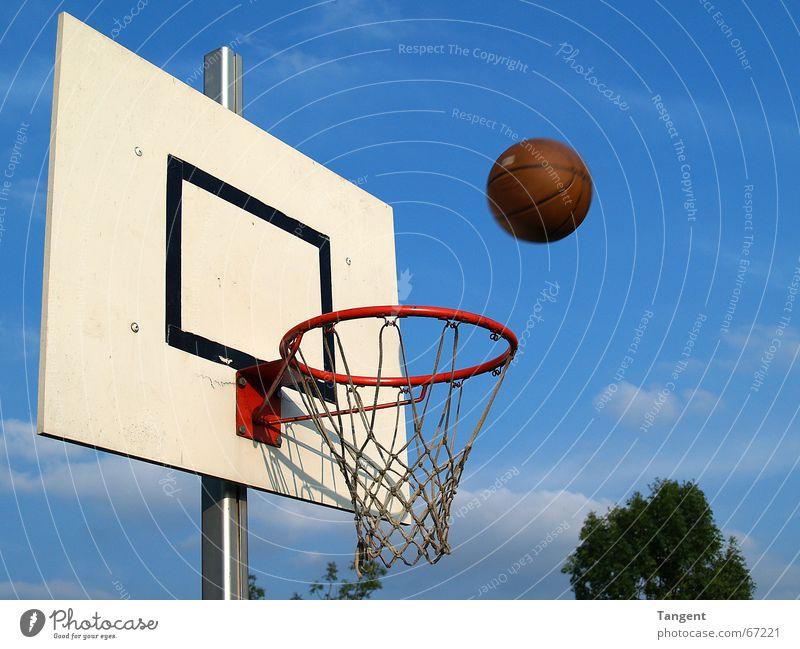 Der ist drin! oder? Sport Ballsport Sportveranstaltung Himmel Netz Bewegung fliegen werfen Erfolg Ziel Korb Treffer Basketball Außenaufnahme Menschenleer