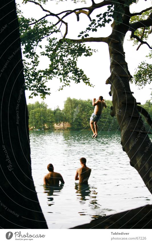 Splaaaaaaaaaaatsch Wasser Baum See Wellen beobachten Schwimmen & Baden Bombe Waldsee