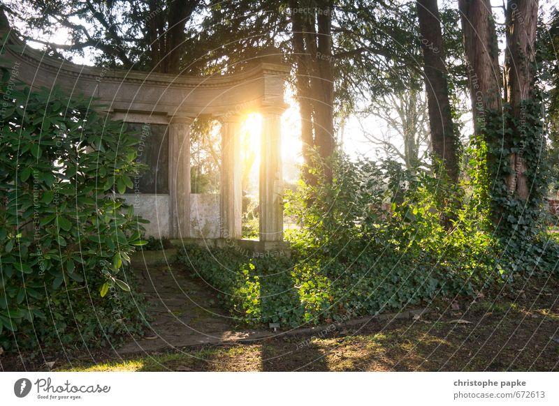 Geheimnisvolle Ruinen Wald Tod Stein Park historisch Denkmal Urwald Friedhof Efeu Tempel Grab Grabmal