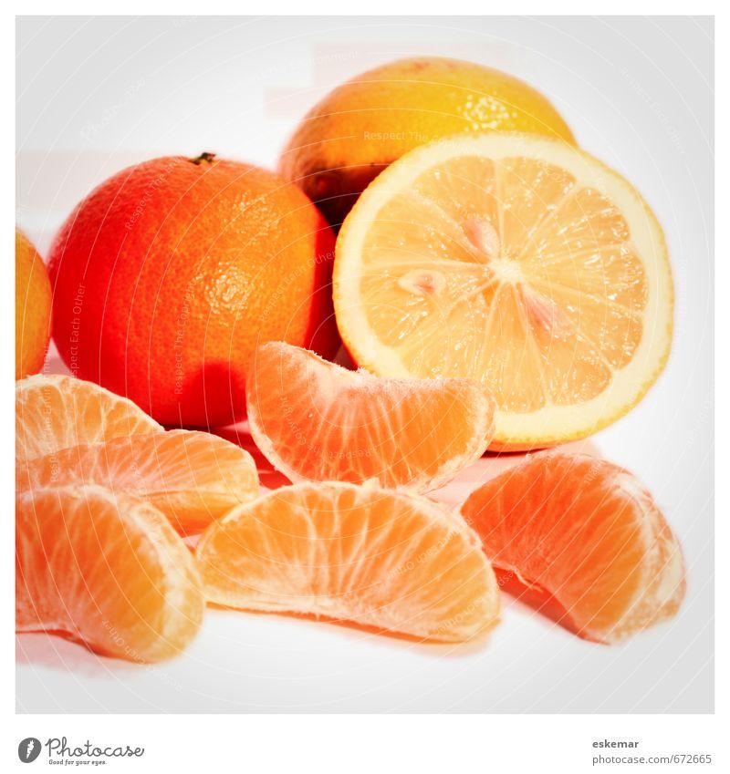 Zitrusfrüchte Lebensmittel Frucht Mandarine Zitrone Ernährung Bioprodukte Vegetarische Ernährung Diät frisch retro viele weiß Quadrat Rahmen gerahmt
