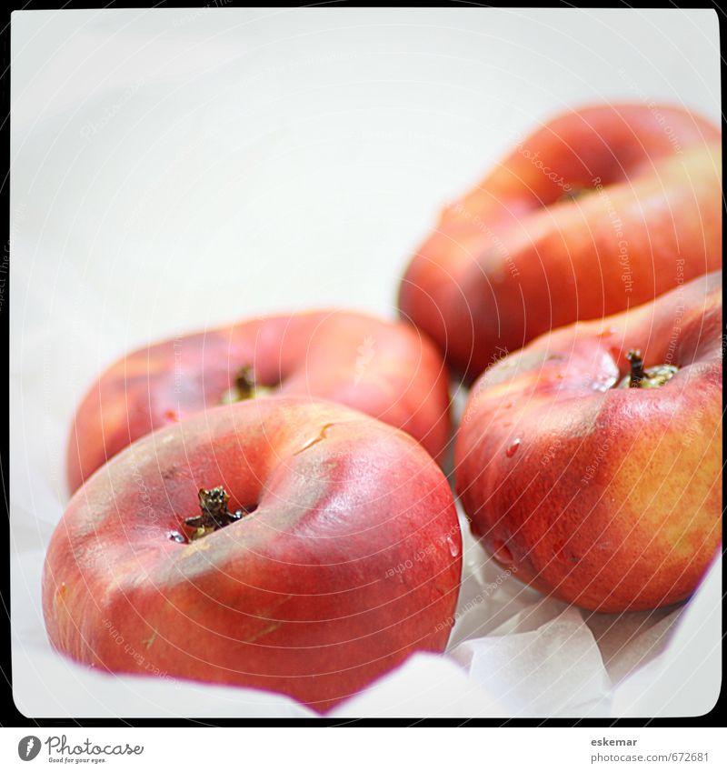 Bergnektarinen Lebensmittel Frucht Nektarine Bioprodukte Vegetarische Ernährung Diät frisch retro weiß Quadrat Rahmen gerahmt Filter gefiltert