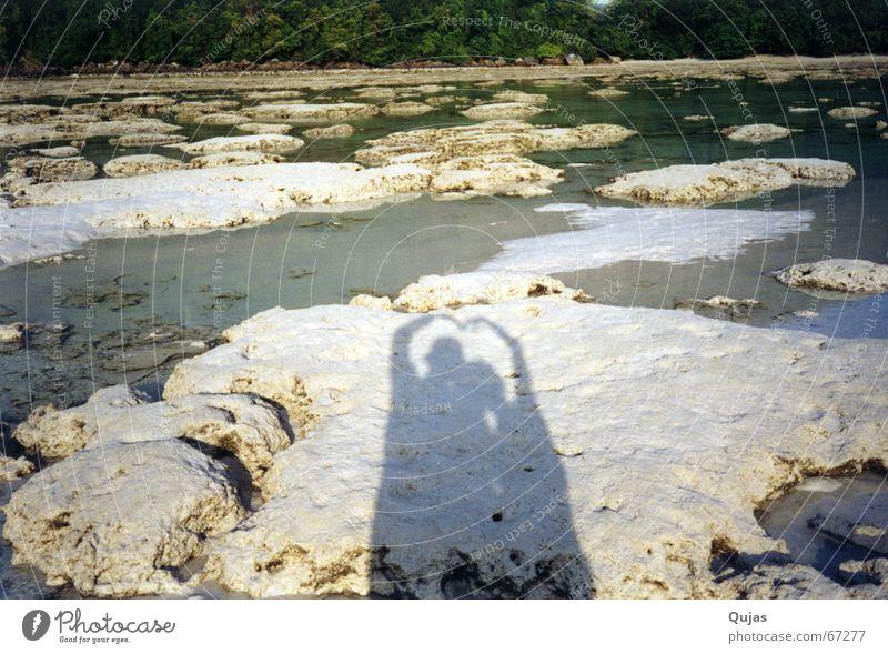 verliebtes schattenpaar Strand Ferien & Urlaub & Reisen Liebe Glück Paar Zusammensein paarweise Vertrauen Symbole & Metaphern Partnerschaft Ehe Ehering verheiratet Seestern