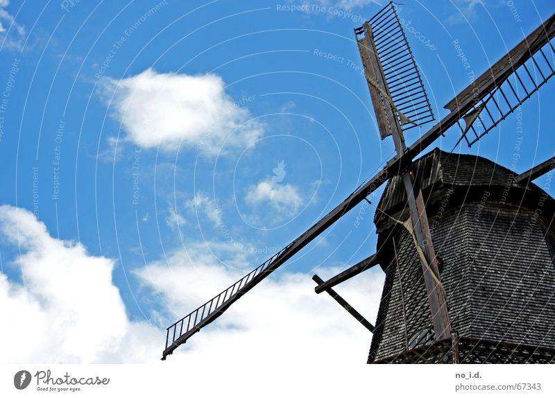 Zum Gedenken An Don Quichotte Mühle Windmühle historisch Holz zerkleinern Altertum Handwerk Außenaufnahme drehen Potsdam alt vergangene zeit Himmel