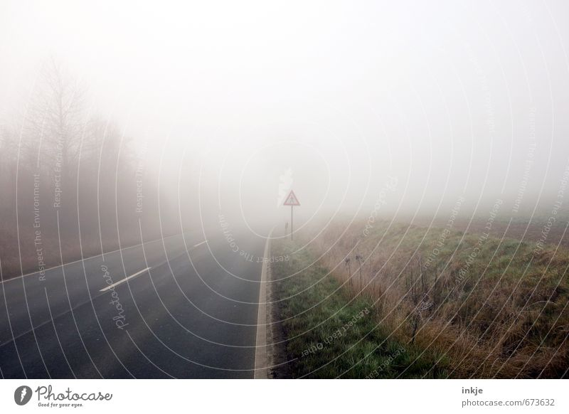 spooky walk Natur Stadt Baum Winter dunkel Umwelt Straße Gefühle Herbst Wege & Pfade Gras hell Stimmung Luft Angst Wetter