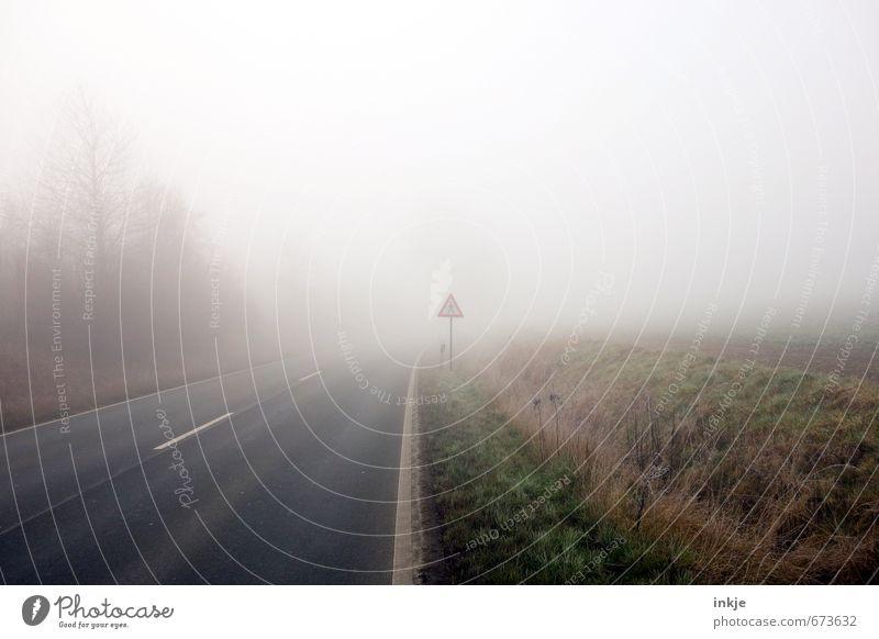 spooky walk Umwelt Luft Herbst Winter Wetter schlechtes Wetter Nebel Baum Gras Feldrand Stadtrand Menschenleer Verkehr Verkehrswege Straßenverkehr Autofahren