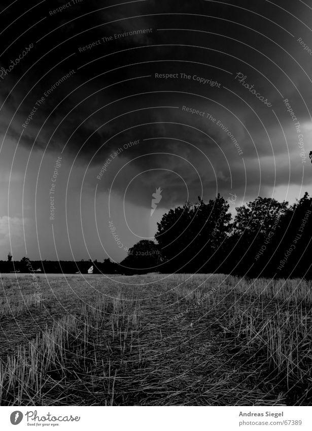 Da braut sich was zusammen... schwarz Wolken dunkel Regen Feld Wind Wetter bedrohlich Sturm Ernte Gewitter Unwetter Stoppel Donnern