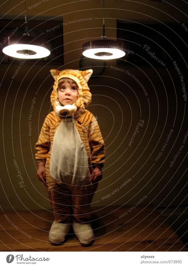 Beam-Tiger Kind weiß ruhig gelb lustig Spielen braun wild niedlich weich Neugier Stoff Fell Karneval geduldig