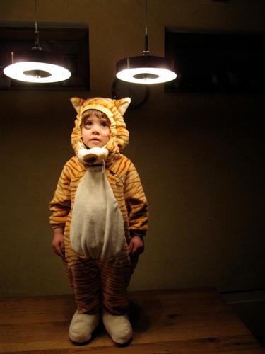 Beam-Tiger Spielen Karneval Kind Stoff Fell lustig niedlich wild weich braun gelb weiß geduldig ruhig Neugier Farbfoto Innenaufnahme Textfreiraum rechts