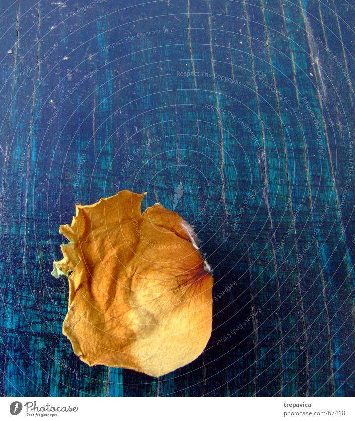 bluetenblatt Holz Blume Blatt Blüte Rose blau-gelb grün-gelb 1 Einsamkeit Teile u. Stücke